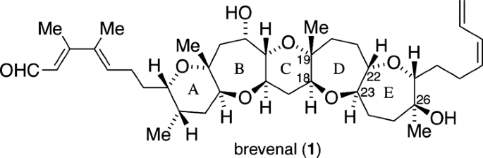 Sequential exo -mode oxacyclizations for the synthesis of the CD