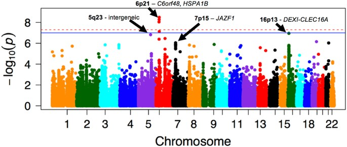 Genetic variants at the 16p13 locus confer risk for