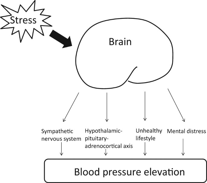 Stress Test Blood Pressure Readings: Clinical Significance Of Stress-related Increase In Blood