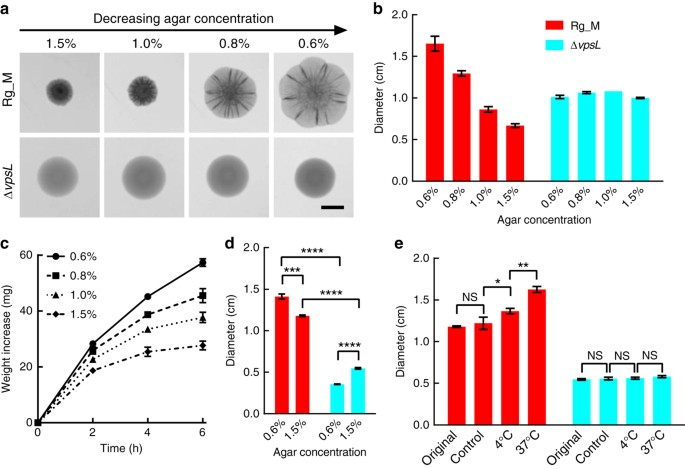 Extracellular Matrix Mediated Osmotic Pressure Drives Vibrio
