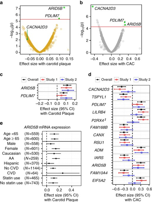 Blood Monocyte Transcriptome And Epigenome Analyses Reveal Loci