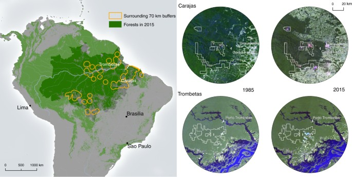 Mining drives extensive deforestation in the Brazilian Amazon ...