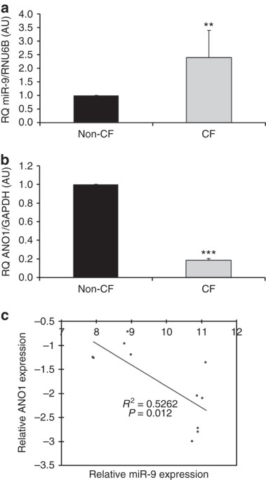 Microrna 9 Downregulates The Ano1 Chloride Channel And Contributes