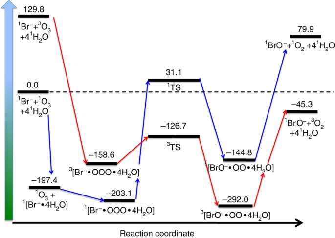A Surface Stabilized Ozonide Triggers Bromide Oxidation At The