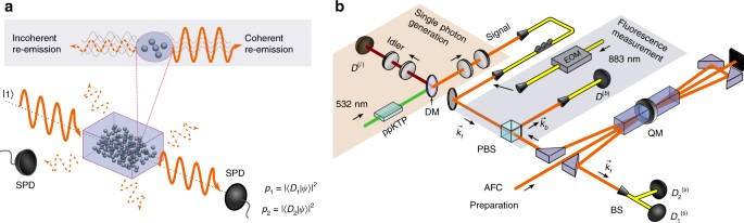 Experimental certification of millions of genuinely entangled atoms ...
