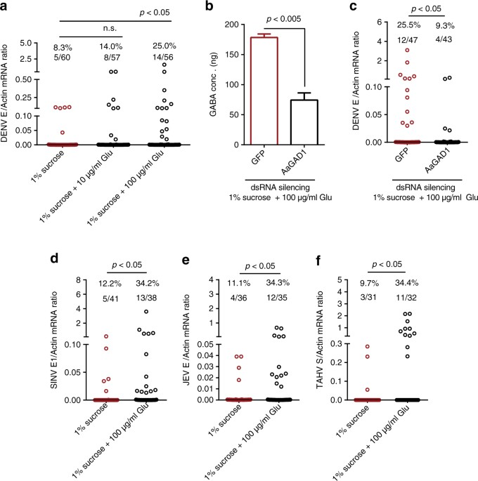 Blood Meal Acquisition Enhances Arbovirus Replication In Mosquitoes