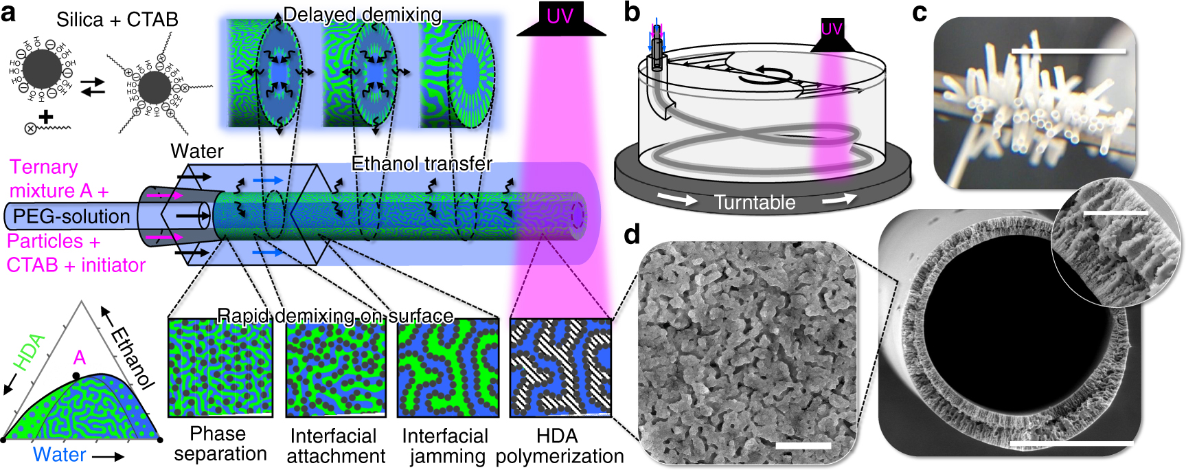 Multifunctional nanoposite hollow fiber membranes by