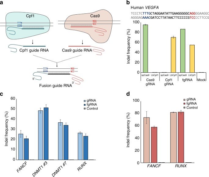 fusion guide rnas for orthogonal gene manipulation with cas9 and