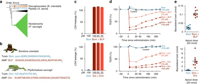 Antimicrobial Peptides In Frog Poisons Constitute A Molecular Toxin