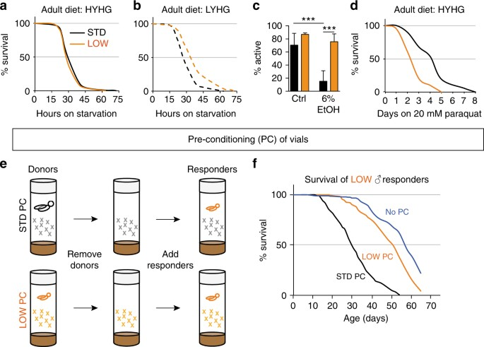 adult stress resistance and autotoxins are regulated by developmental diet a d survival of low orange vs std black adult males during starvation a