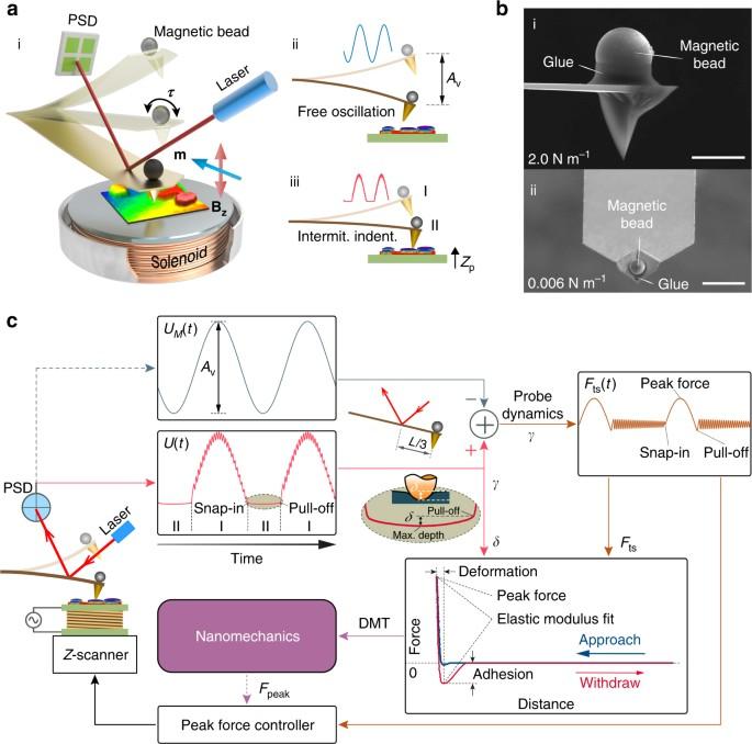 Broad modulus range nanomechanical mapping by magnetic-drive