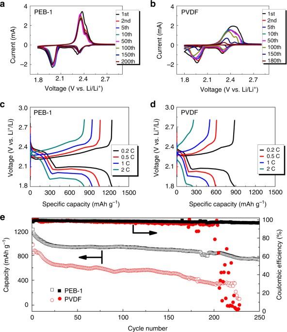 Molecular Understanding Of Polyelectrolyte Binders That