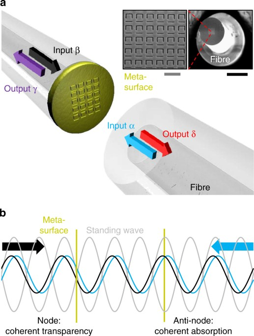 b6c05216546 Coherent interaction of light with light on a metasurface. a Coherent  optical input signals α and β interact on a metasurface absorber