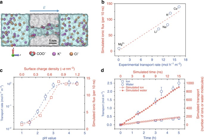 ultrafast ion sieving using nanoporous polymeric membranes nature