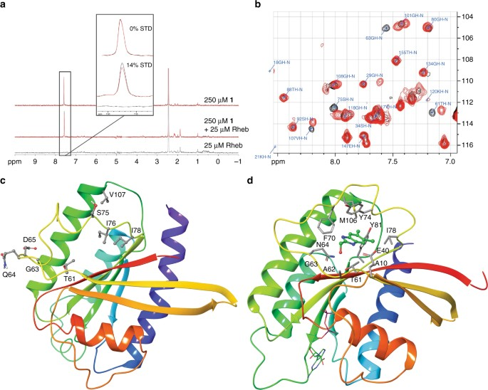 A Small Molecule Inhibitor Of Rheb Selectively Targets Mtorc1