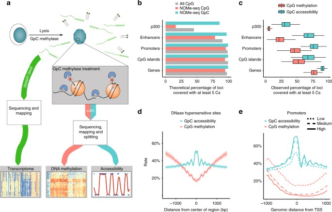Scnmt Seq Enables Joint Profiling Of Chromatin Accessibility Dna