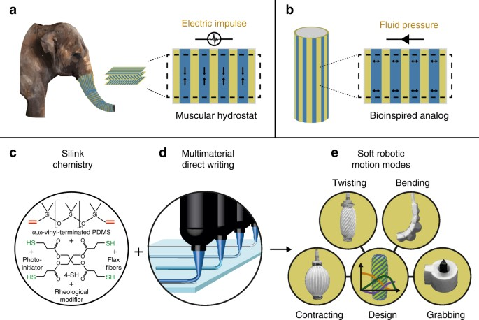 3D printing of robotic soft actuators with programmable bioinspired architectures