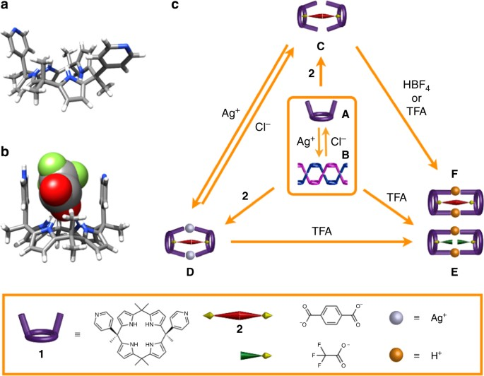 Control over multiple molecular states with directional