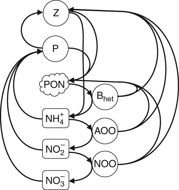 Ecological Control Of Nitrite In The Upper Ocean