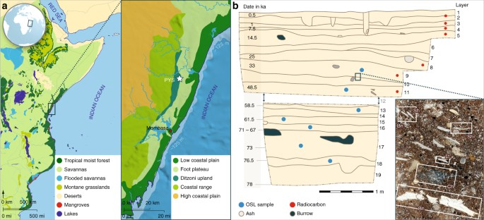 78,000 year old record of Middle and Later Stone Age innovation in