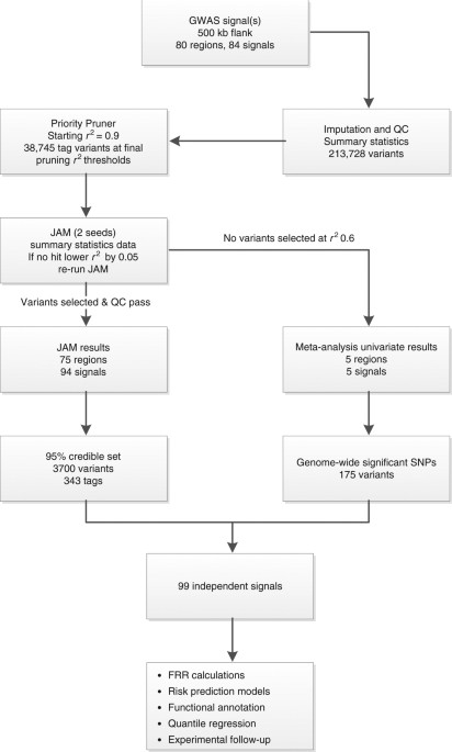 Fine-mapping of prostate cancer susceptibility loci in a