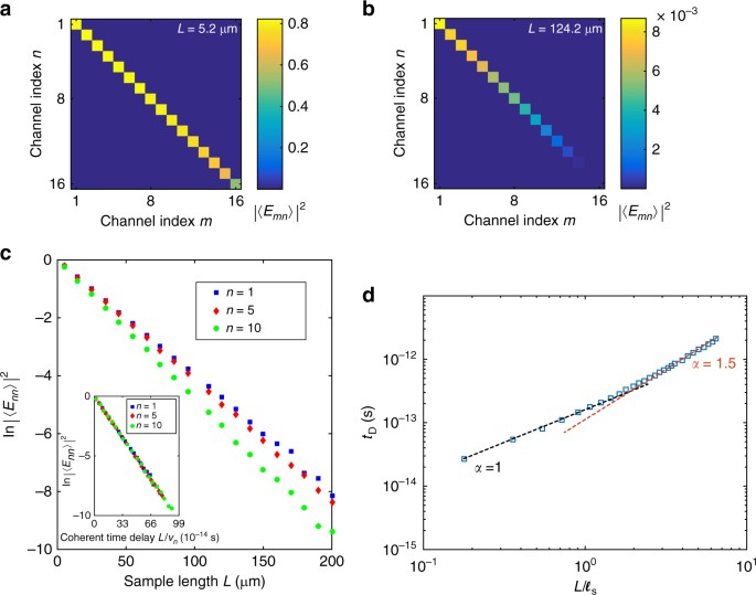 Simulations of wave transmission in opaque and translucent samples. a 4b7fc1f6025