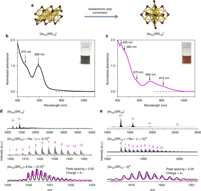 Revealing Isoelectronic Size Conversion Dynamics Of Metal