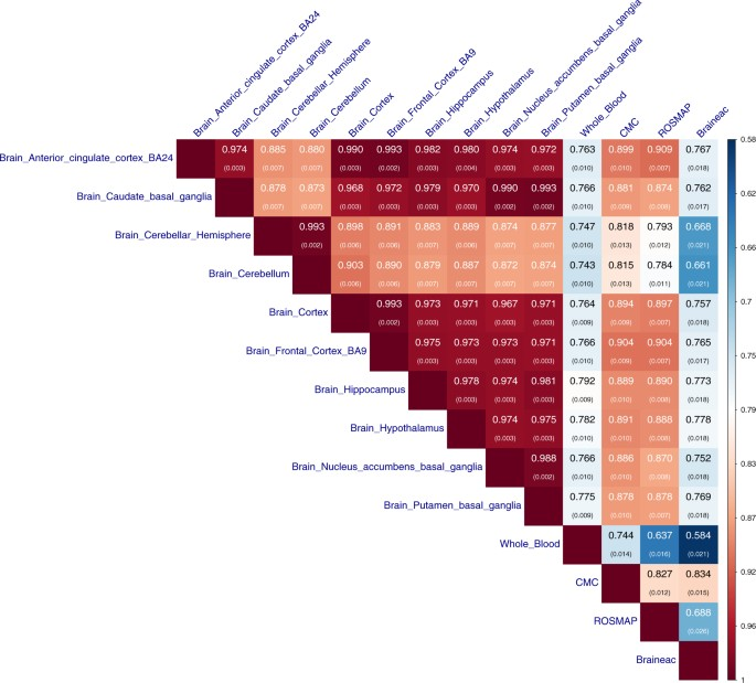 Identifying gene targets for brain-related traits using