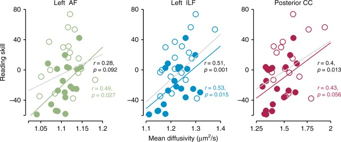 Rapid and widespread white matter plasticity during an