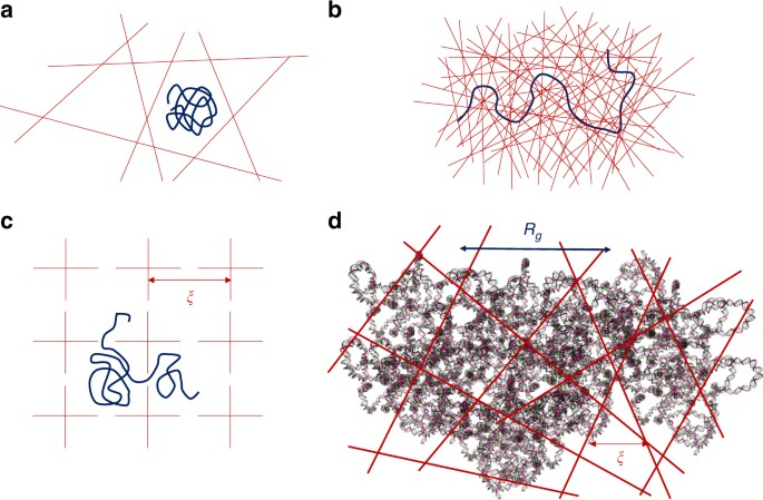 Topologically frustrated dynamics of crowded charged macromolecules