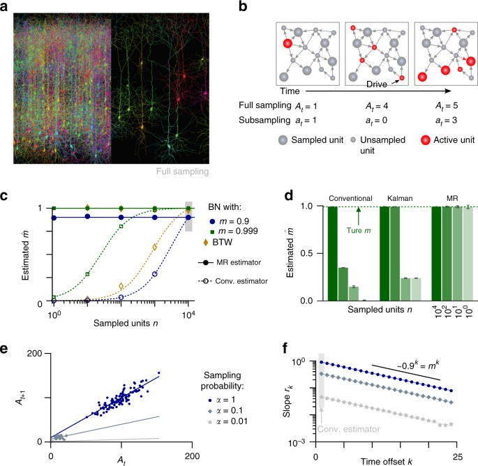 Inferring collective dynamical states from widely unobserved