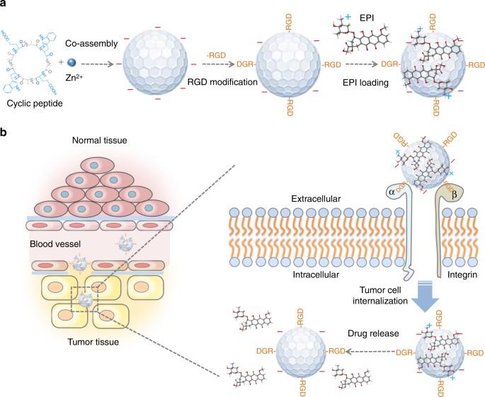 Peptide Based Drug Design Pdf