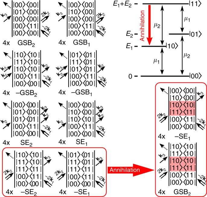 Direct Observation Of Excitonexciton Interactions Nature