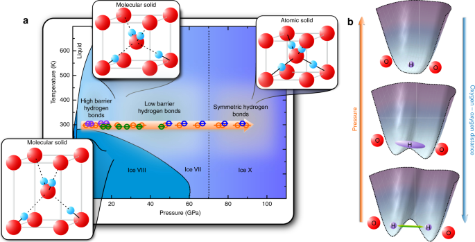 Observation Of Nuclear Quantum Effects And Hydrogen Bond