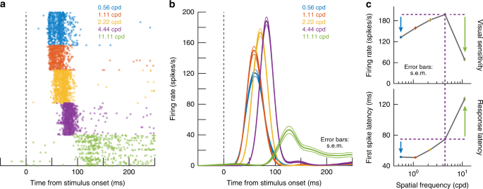 Spatial Frequency Sensitivity In Macaque Midbrain Nature
