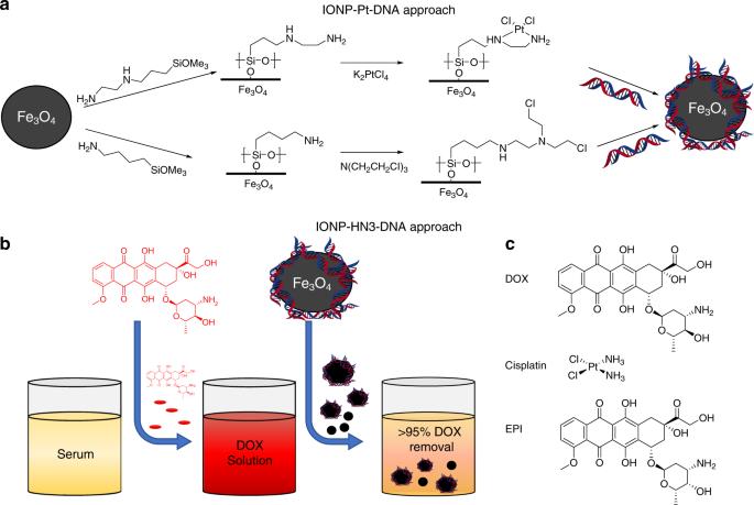 Drug capture materials based on genomic DNA-functionalized magnetic