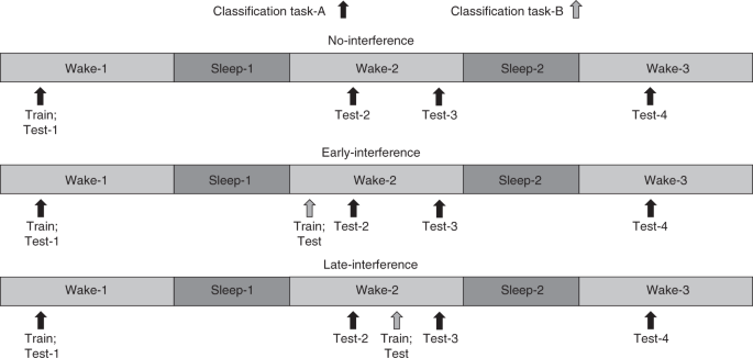 Sleep-dependent reconsolidation after memory destabilization