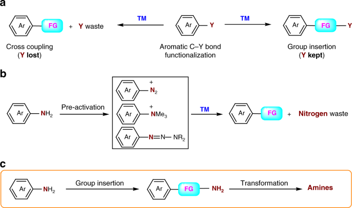 Formal group insertion into aryl C‒N bonds through an