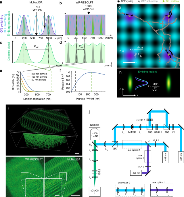 Enhanced photon collection enables four dimensional fluorescence ...