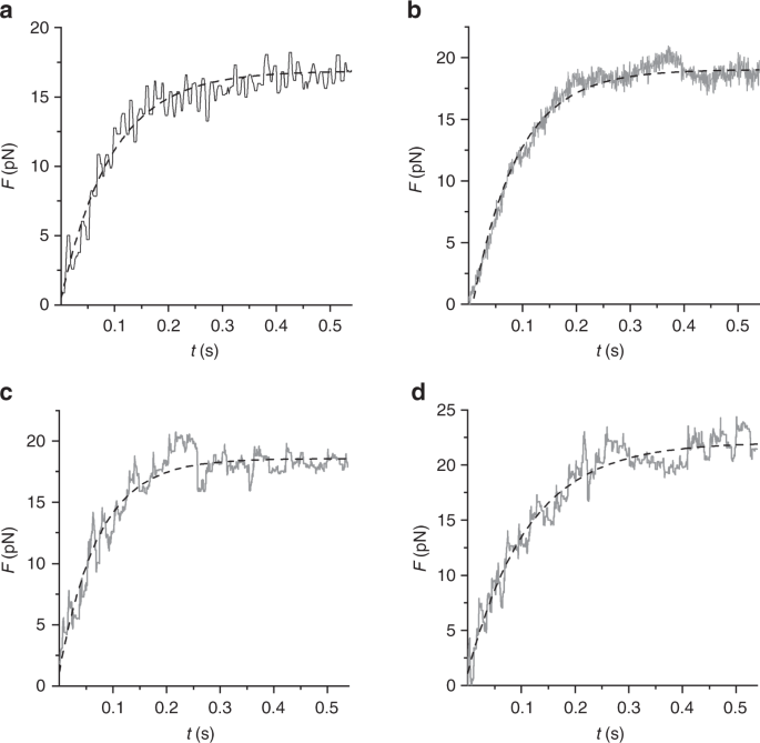 A myosin II nanomachine mimicking the striated muscle | Nature ...