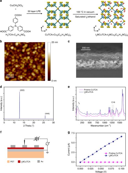 Mechano Regulated Metal Organic Framework Nanofilm For Ultrasensitive And Anti Jamming Strain Sensing Nature Communications
