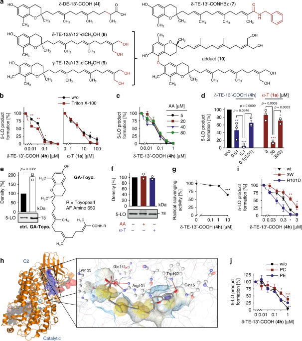 Endogenous Metabolites Of Vitamin E Limit Inflammation By Targeting 5 Lipoxygenase Nature Communications