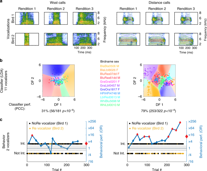zebra finches identify individuals using vocal signatures unique to Bird Body Parts Diagram vocalizer discrimination for two call types vocalizations a spectrograms of aggressive calls ws supplementary audio 1 and contact distance calls dc