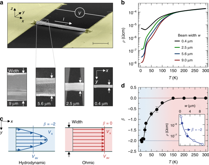 Thermal and electrical signatures of a hydrodynamic electron fluid on
