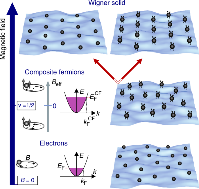 Turning 22 Transition Planning Panel >> Composite Fermion Liquid To Wigner Solid Transition In The Lowest
