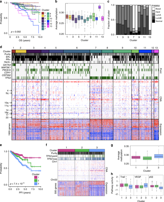 Multi-omic tumor data reveal diversity of molecular mechanisms that correlate with survival