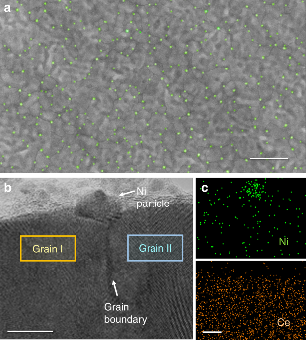 In situ synthesis of supported metal nanocatalysts through heterogeneous doping
