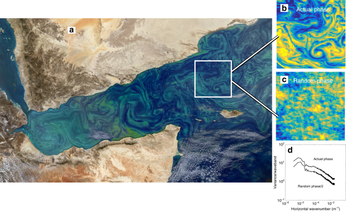 The role of submesoscale currents in structuring marine