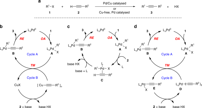 Mechanism of copper-free Sonogashira reaction operates