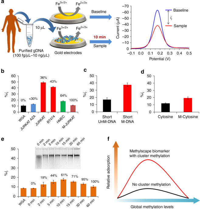 Epigenetically reprogrammed methylation landscape drives the DNA self-assembly and serves as a universal cancer biomarker